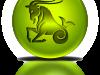 Capricorn horoscop 2016