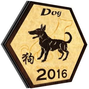 Zodiac caine 2016