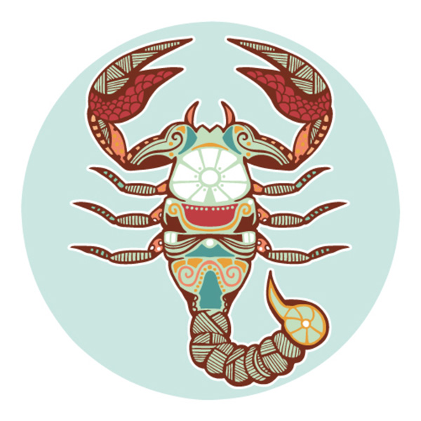 Zodie Scorpion 2016