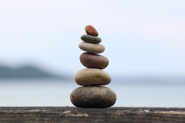 Principii picaturi zen