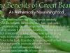 Informatii fasole verde