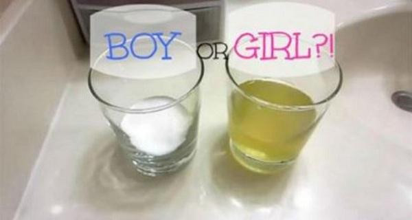 Sexul fatului