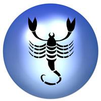 Scorpion mai 2016