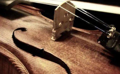 Viorile Stradivarius puse la indoiala