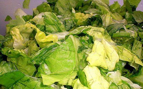 Salata din salata verde