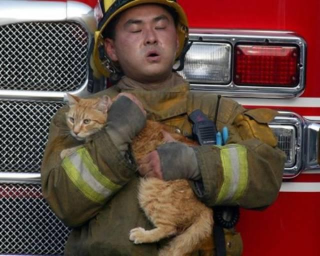 Pompier la datorie