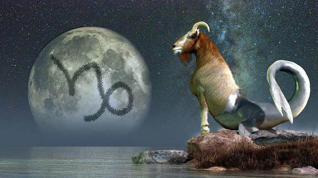 Caracteristici Zodia Capricorn