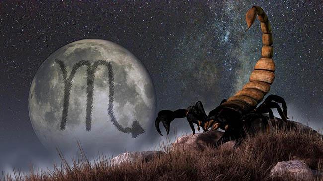 Informaţii despre zodia Scorpion