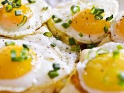 Reţete antreuri cu ouă