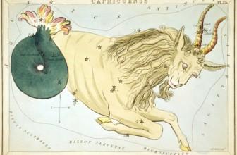 Zodiac Capricorn pe 6 luni (2016)