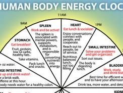 Ceasul energetic al organismului
