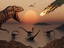 De ce au dispărut dinozaurii
