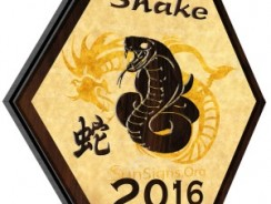 Zodiacul chinezesc: Sarpele in 2016