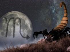 Caracteristici Zodia Scorpion