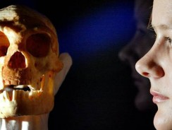 Istoria migraţiei Homo Sapiens ar putea fi rescrisă