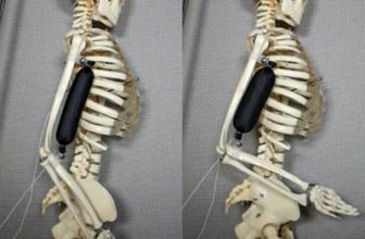 Încă un pas spre androizi: muşchi pentru roboţi