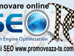 Servicii SEO: importanaţa pentru promovarea online
