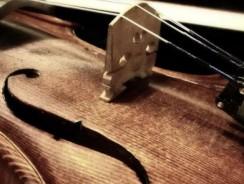 Superioritatea viorilor Stradivarius pusa la indoiala
