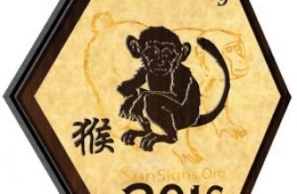 Zodiacul Chinezesc: Maimuta in 2016