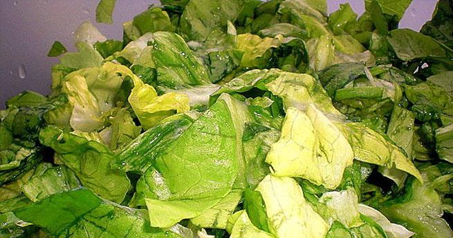 Retete salata verde