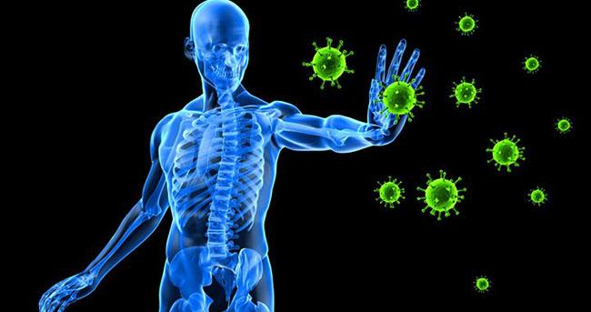 Sistem imunitar cancer