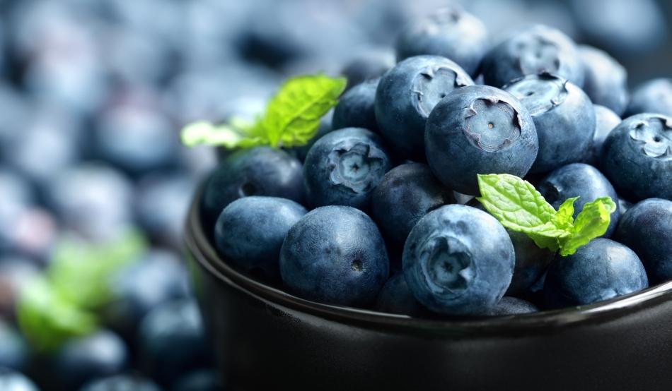 Beneficiile pe care ti le poate aduce consumul de afine